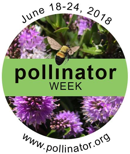 PollinatorWeek2018